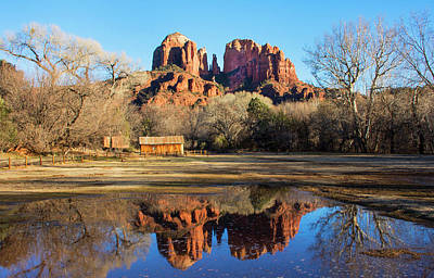 Photograph - Cathedral Rock, Sedona by Barbara Manis