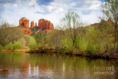 Photograph - Cathedral Rock Spring by Jon Burch Photography