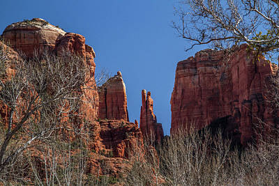 Photograph - Cathedral Rock View by Roger Mullenhour