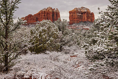Photograph - Cathedral Rocks In Snow by Lee Kirchhevel