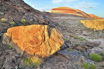 Photograph - Cathedral Valley Bentonite by Ray Mathis