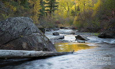Photograph - Catherine Creek by Idaho Scenic Images Linda Lantzy