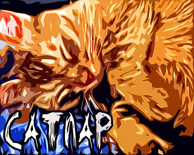 Catnap Digital Art - Catnap by David G Paul