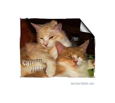 Catnap Time Original