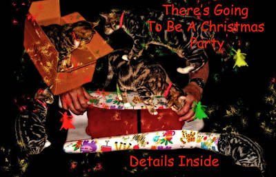 Photograph - Cats Christmas Party Invitation by Kay Brewer