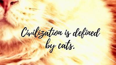Photograph - Cats Define Civilization. by Judy Kennedy