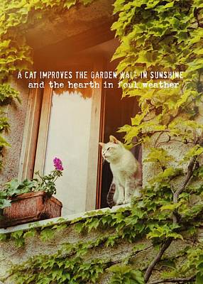 Cats Eye View Quote Art Print by JAMART Photography