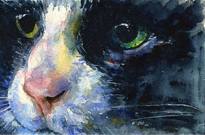 Painting - Cats Eyes 20 by John D Benson