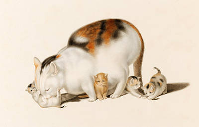 Caress Drawing - Cats. Mother With Four Playing Kittens by Gottfried Mind