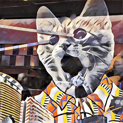 Photograph - Cats On Congress by Cherylene Henderson