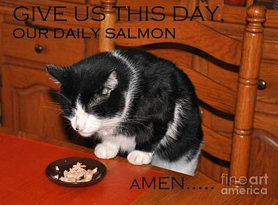 Cat's Prayer Revisited By Teddy The Ninja Cat Original by Reb Frost