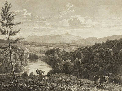 Cow Drawing - Catskill Mountains by Asher Brown Durand
