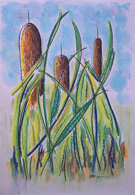 Cattails #5 Art Print