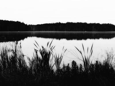 Photograph - Cattails By The Lake - Black And White by MTBobbins Photography