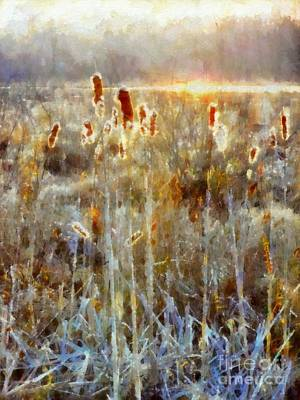 Cattails - Misty Morning - Marsh - Frost Art Print by Janine Riley