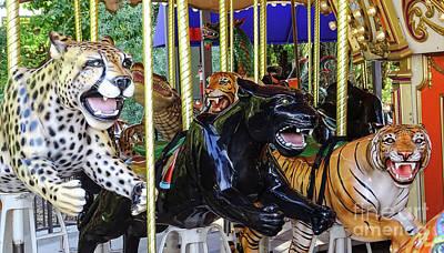 Photograph - Catting Around Carousel by Deniece Platt