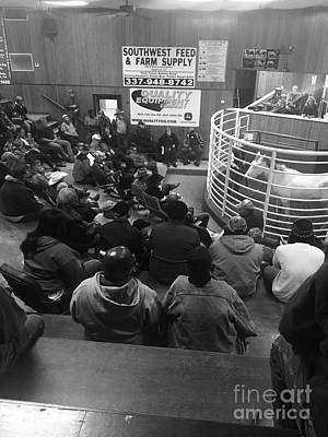 Photograph - Cattle And Horse Auction by Robin Lewis