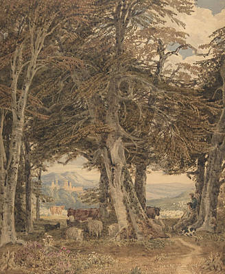 Drawing - Cattle And Sheep At Resting At The Edge Of A Forest by George Barret