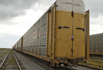 Photograph - Cattle Cars by Michael Rutland