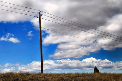 Photograph - Cattle Chaser by Diana Angstadt