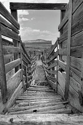 Photograph - Cattle Chute by Jeff Brunton
