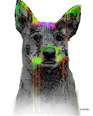 Digital Art - Australian Cattle Dog by Marlene Watson