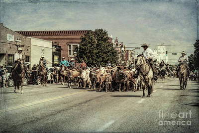 Photograph - Cattle Drive by Lynn Sprowl