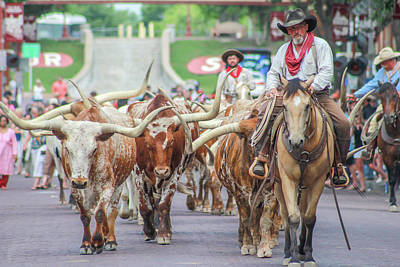 Cattle Drive Photograph - Cattle Drive by Penny Nichols