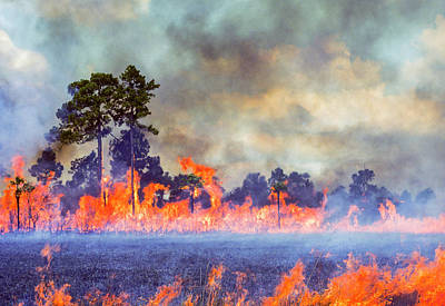 Photograph - Cattle Lease Burn by Robert Potts