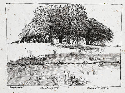 Drawing - Cattle Pasture,tree Landscape, Plein Air Ink Drawing by Martin Stankewitz