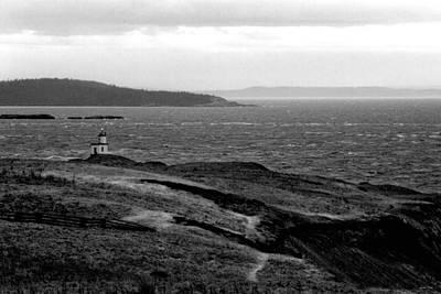 Cattle Point Lighthouse Art Print