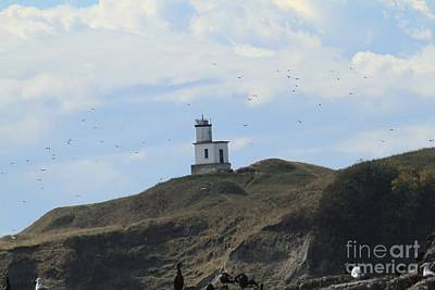 Photograph - Cattle Point Lighthouse San Juan Island Washington State by California Views Mr Pat Hathaway Archives
