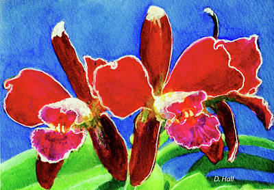 Cattleya Orchids Flowers #215 Art Print by Donald k Hall