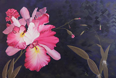 Cattleya Art Print by Stephen Daddona