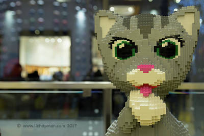 Photograph - Caturday In Legoville by Lora Lee Chapman