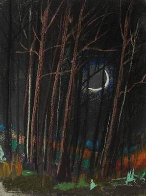 Painting - Caught In The Shadow Of The Moon by John Williams