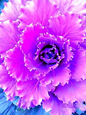 Photograph - Cauliflower Abstract #7 by Ed Weidman