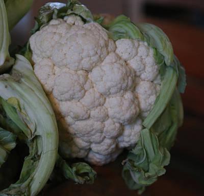 Cauliflower Painting - Cauliflower by Imagery-at- Work