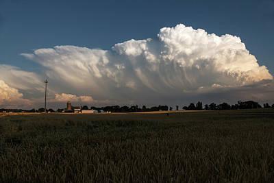 Photograph - Cauliflower In The Sky by Bill Jordan