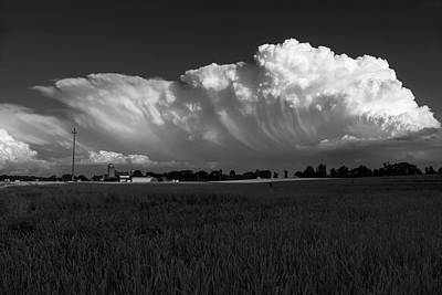 Photograph - Cauliflower In The Sky In Black And White by Bill Jordan