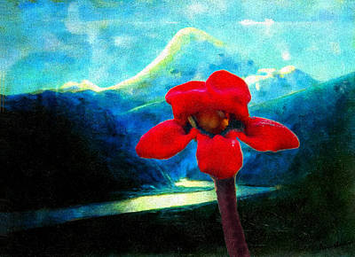 Photograph - Caucasus Love Flower I by Anastasia Savage Ealy