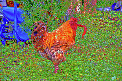 Photograph - Caution Rooster Working by Gina O'Brien