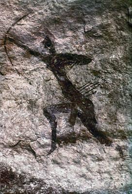 Photograph - Cave Art, Algeria by Granger