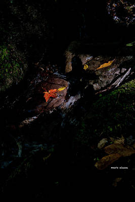 Photograph - Cave by Mark Alesse
