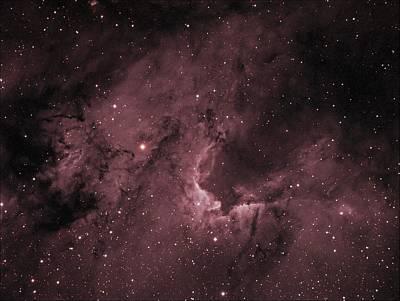 Photograph - Cave Nebula by Tony Sarra