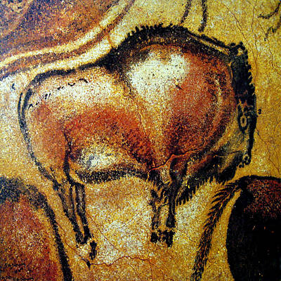 Photograph - Cave Painting 2 by Andrew Fare