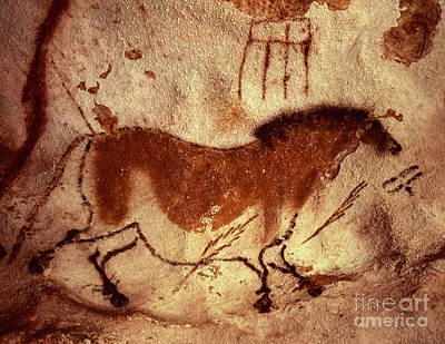Cave Painting Of A Horse Art Print by Unknown