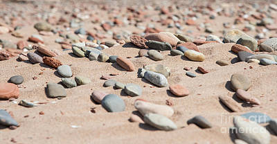 Photograph - Cavendish Beach by Bianca Nadeau