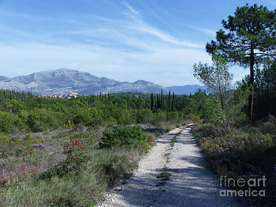 Photograph - Cavtat To Cilipi Pathway by Phil Banks