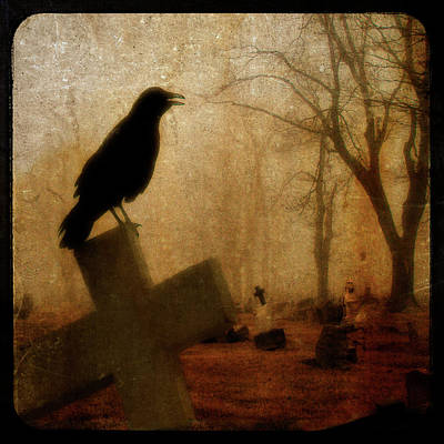 Birds In Graveyard Photograph - Cawing Night Crow by Gothicrow Images